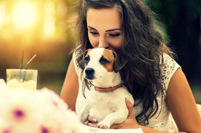 Pet Friedly - Recanto da Paz.jpg