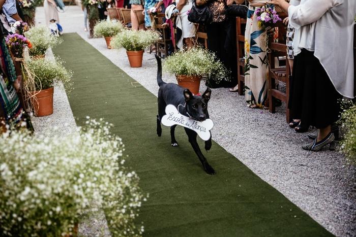 Recanto da Paz - Pets no casamento