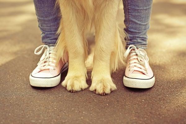 Recanto da Paz - Pet Friendly